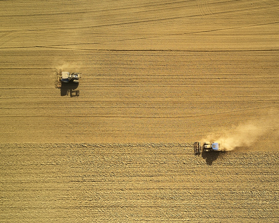 aerial-view-crop-agriculture